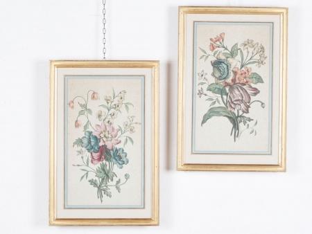Pair of Botanic Watercolored Engravings - IB01187