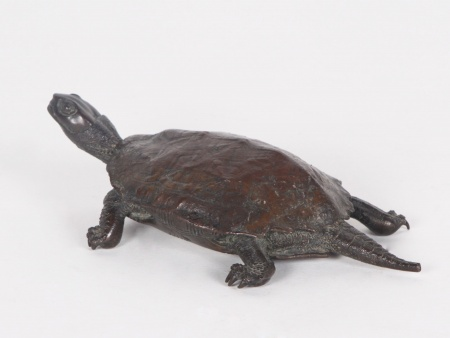 Japanese Bronze Turtle. 19th Century - IB04431