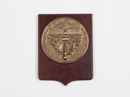 Commemorative Bronze Medal Plate - IB05675