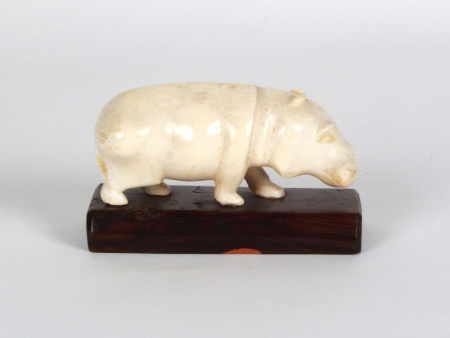 African Ivory Hippopotamus - IB07869