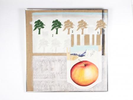"""John Forrester: """"Quercus Robur"""" - IB08744"""