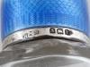 زجاجة من الفضة الاسترليني والكريستال - IB05861